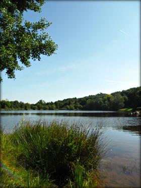 Les paisibles lacs de la région de la Roche aux Fées