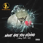 11-What Are You Hiding.jpg