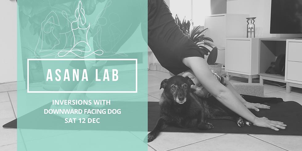ASANA LAB   Inversions with Downward Facing Dog