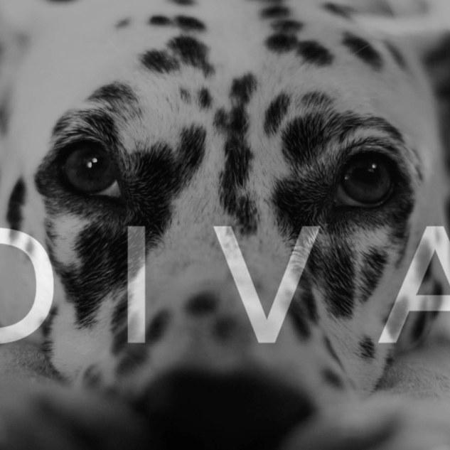 D I V A