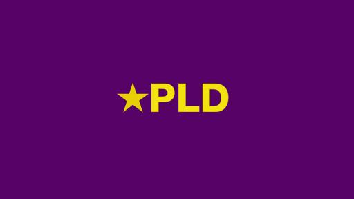PLD y otras organizaciones políticas denuncian sabotaje de proceso electoral municipal