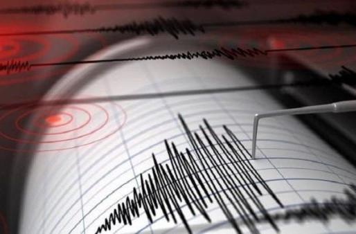 Descartan amenaza de tsunami por temblor