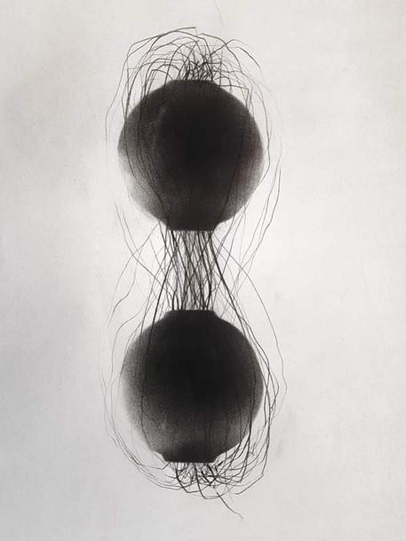 2018 | fusain et graphite sur papier | 20x13