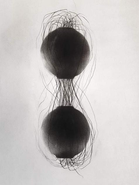 2017/2018 | fusain et graphite sur papier | 20x13