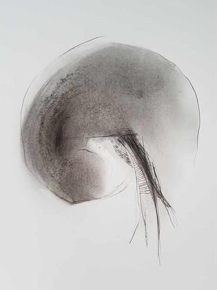 2017 | pierre noire et fusain sur papier | 40 x 30