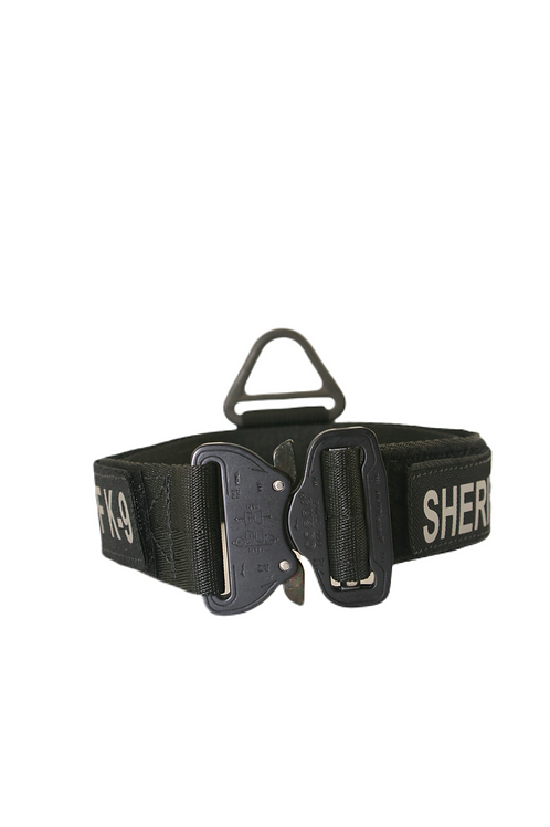 Nylon Collar w/ Cobra Buckle