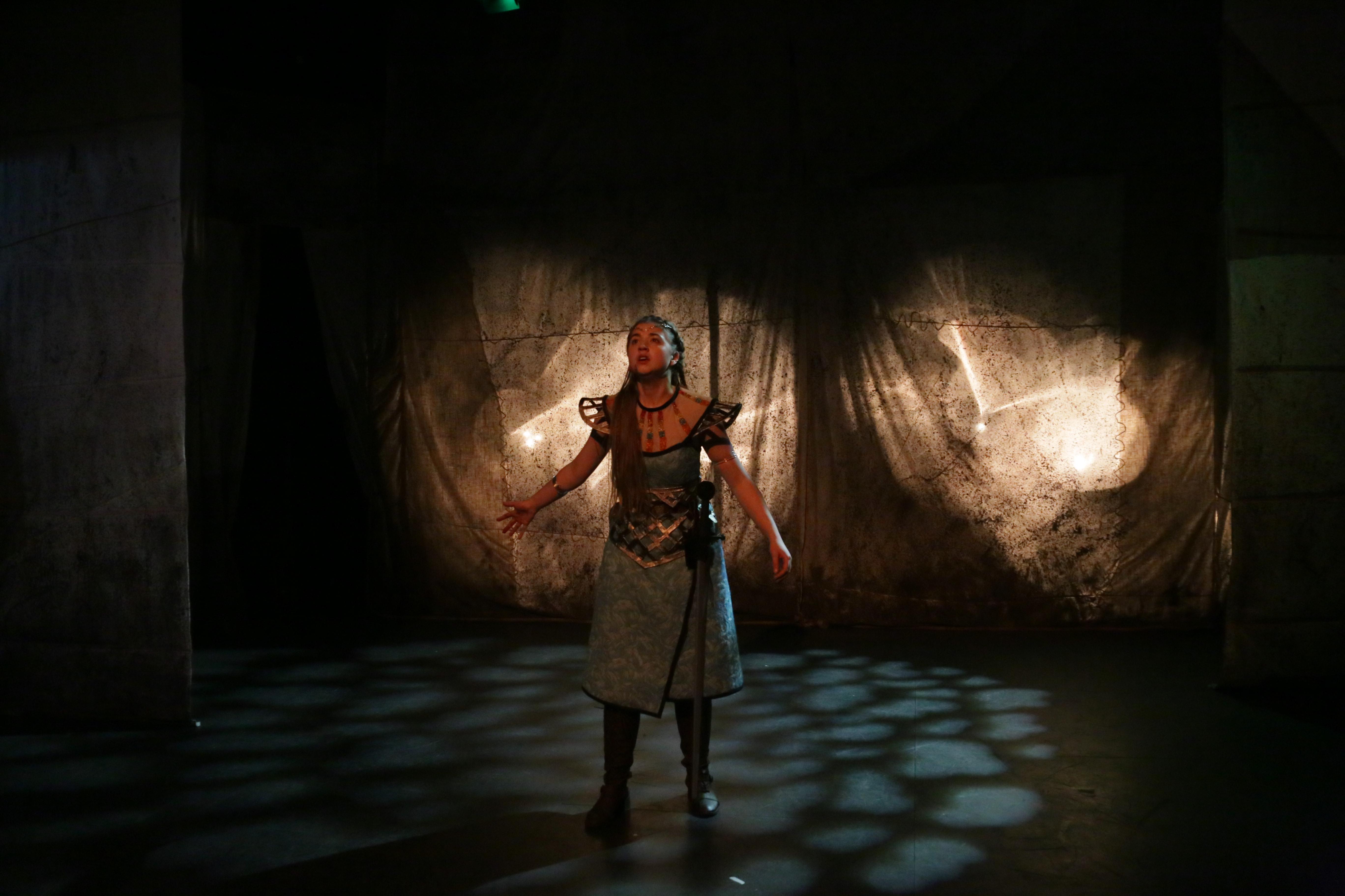 Boudica's Suicide (Anya de Villiers)