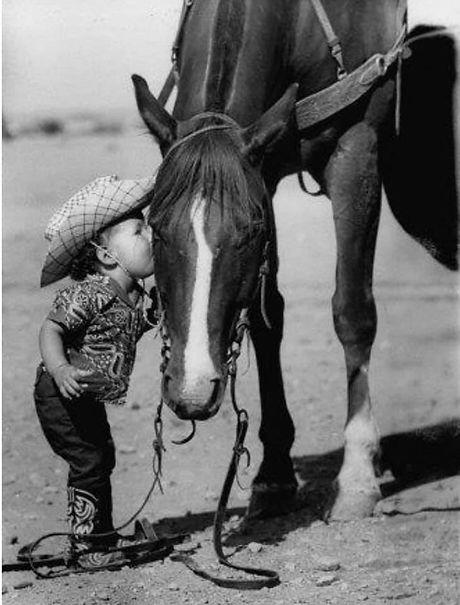 ung_hest.jpg