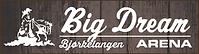 Big_dream_arena_Dark_banner[527].jpg