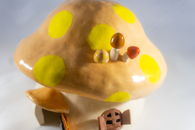 Mushroom House 6