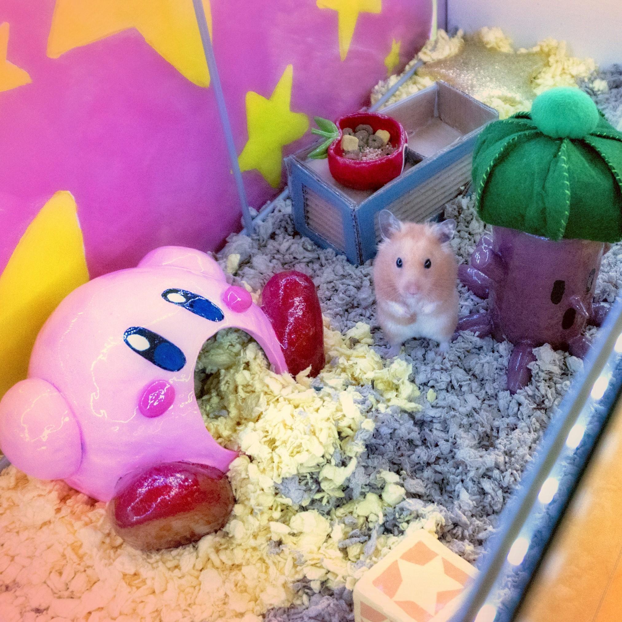 Kirby 5