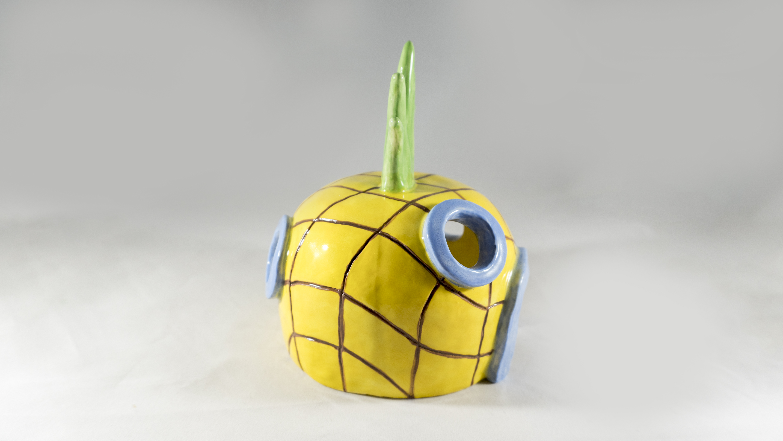 Pineapple Hideout 5