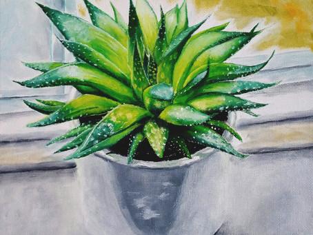 Alo-E, The House Plant