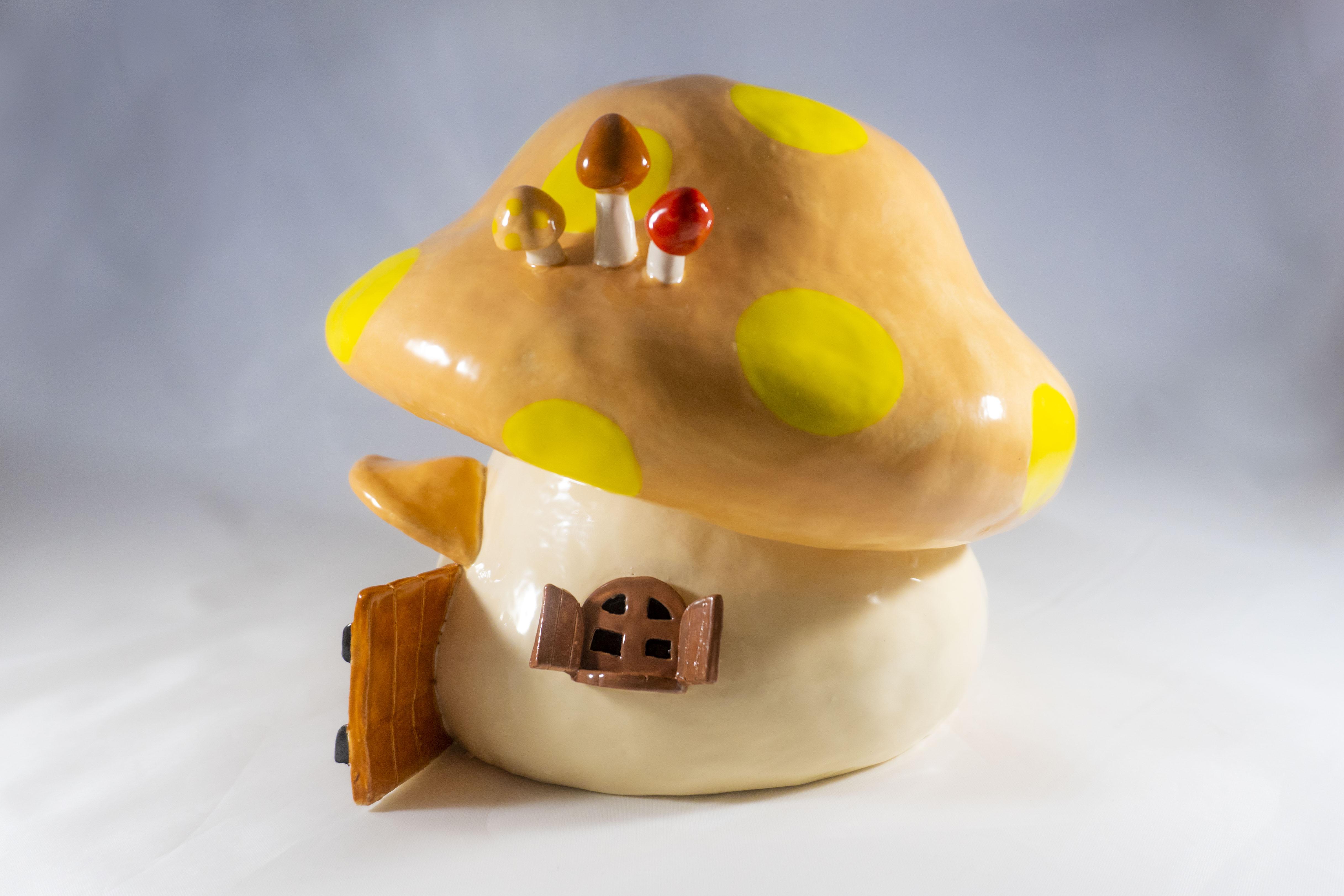 Mushroom House 4