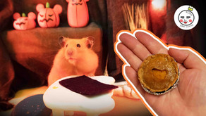 How To Make A Pumpkin Pie For Hamsters