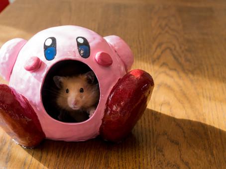 Kirby Hamster House