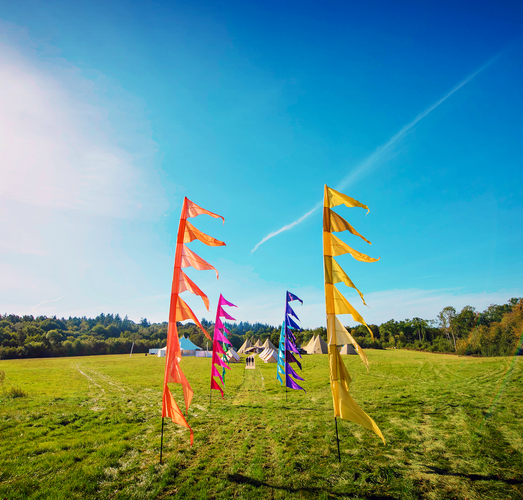 WILD MEADOW FESTIVAL FLAGS.png
