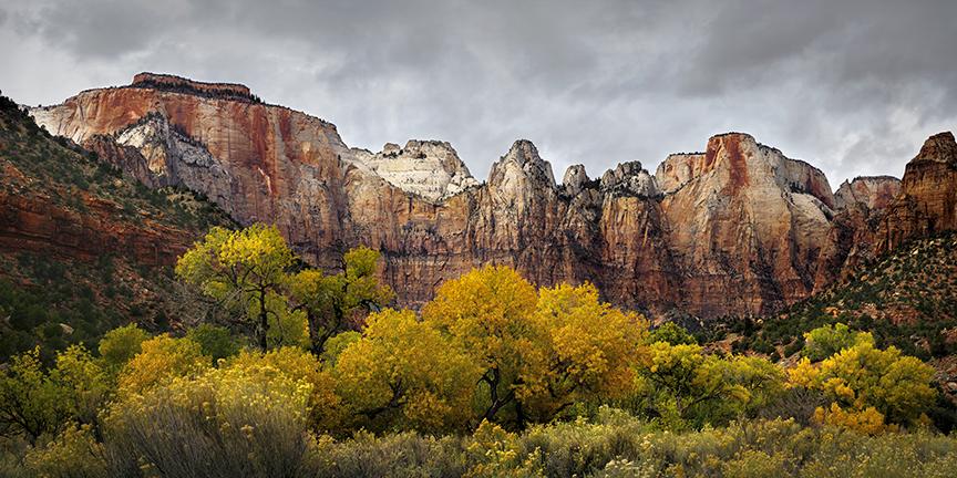 Fall in Zion