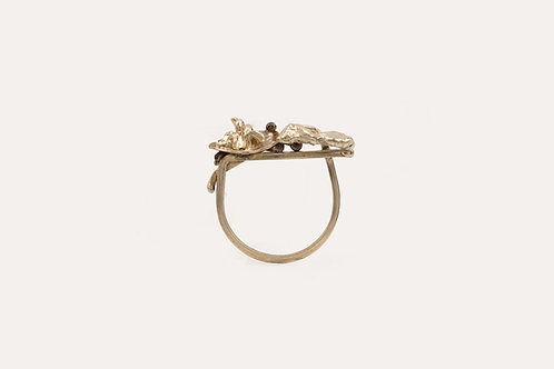 Tatra Ring