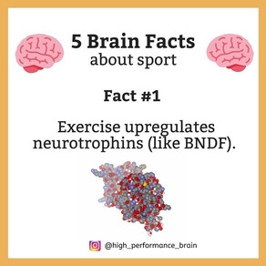 5 Brain Facts about sport