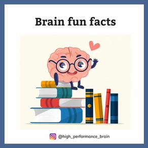 Brain fun facts
