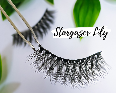 Eco Friendly Cotton FALSE LASHES No Plastic REUSABLE (15+ Wears)  STARGAZER LILY