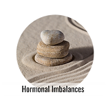 Hormonal Imbalances.png