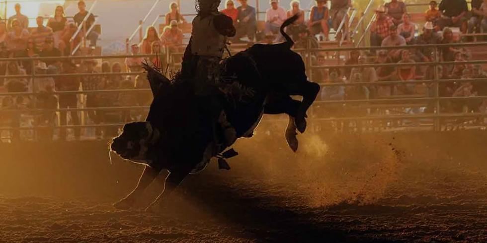 Gilbert Rodeo 2021