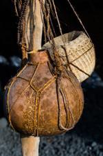 Hawaiian water gourd