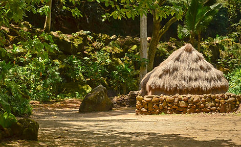 abandoned hay thatch hut in the jungle w