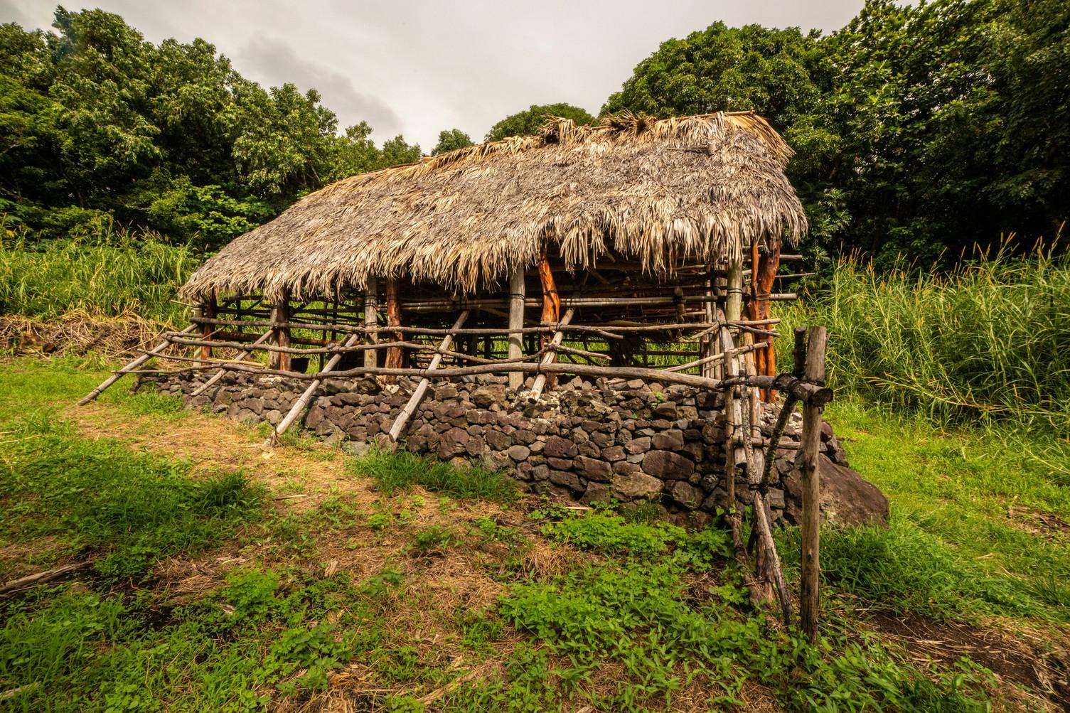 Traditional Hawaiian home (hale)