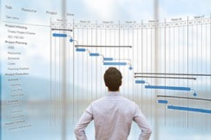 Program Project Management Services.jpg