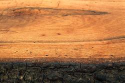 NIck Gilmore Bench Detail 4
