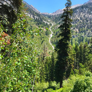 Sequoia-National-Park-4.jpg