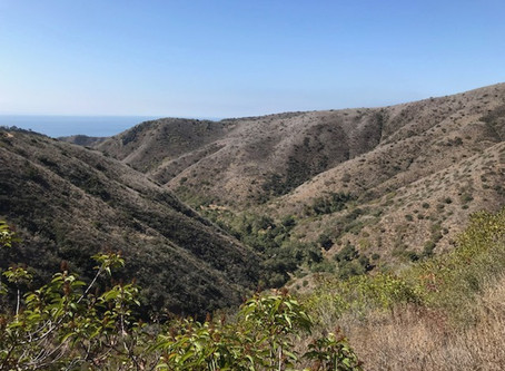 Winter Solstice Hike - at Solstice Canyon