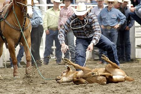 calf roping 3.jpg