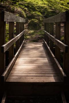 bridge without logo.jpg
