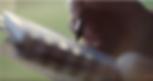 Screen Shot 2020-01-08 at 12.21.33.png