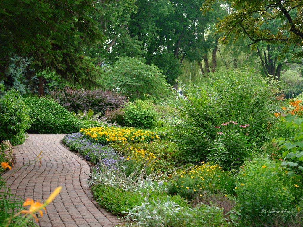 garden landscape - Copy