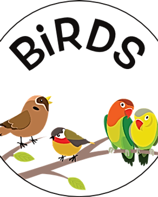 M5 Birds Booklet Icon.png