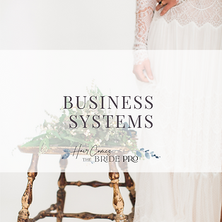 Business Course Cover - Business Systems