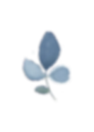 Blue Leaf3.png