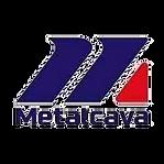 METALCAVA.png