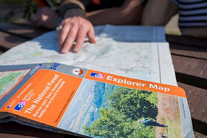hand on National Forest map