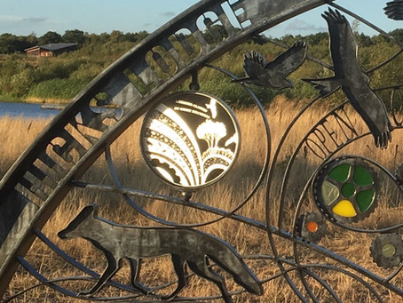 Black to Green creates new heritage sculpture cycling and walking trail in the National Forest