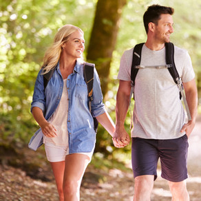 Gentle walking holidays launched around the National Forest