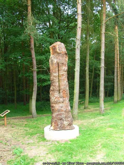 The Needwood noon column in jackson Wood, is one of 6 to see on our electric bike holidays through the National Forest. Made from oak, this column represents the ancient woodland of the region.
