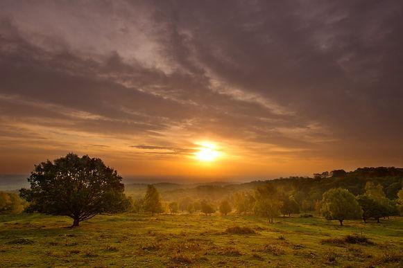 ben hall sunset compressed.jpg
