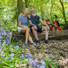 Best places to enjoy bluebells in the National Forest area