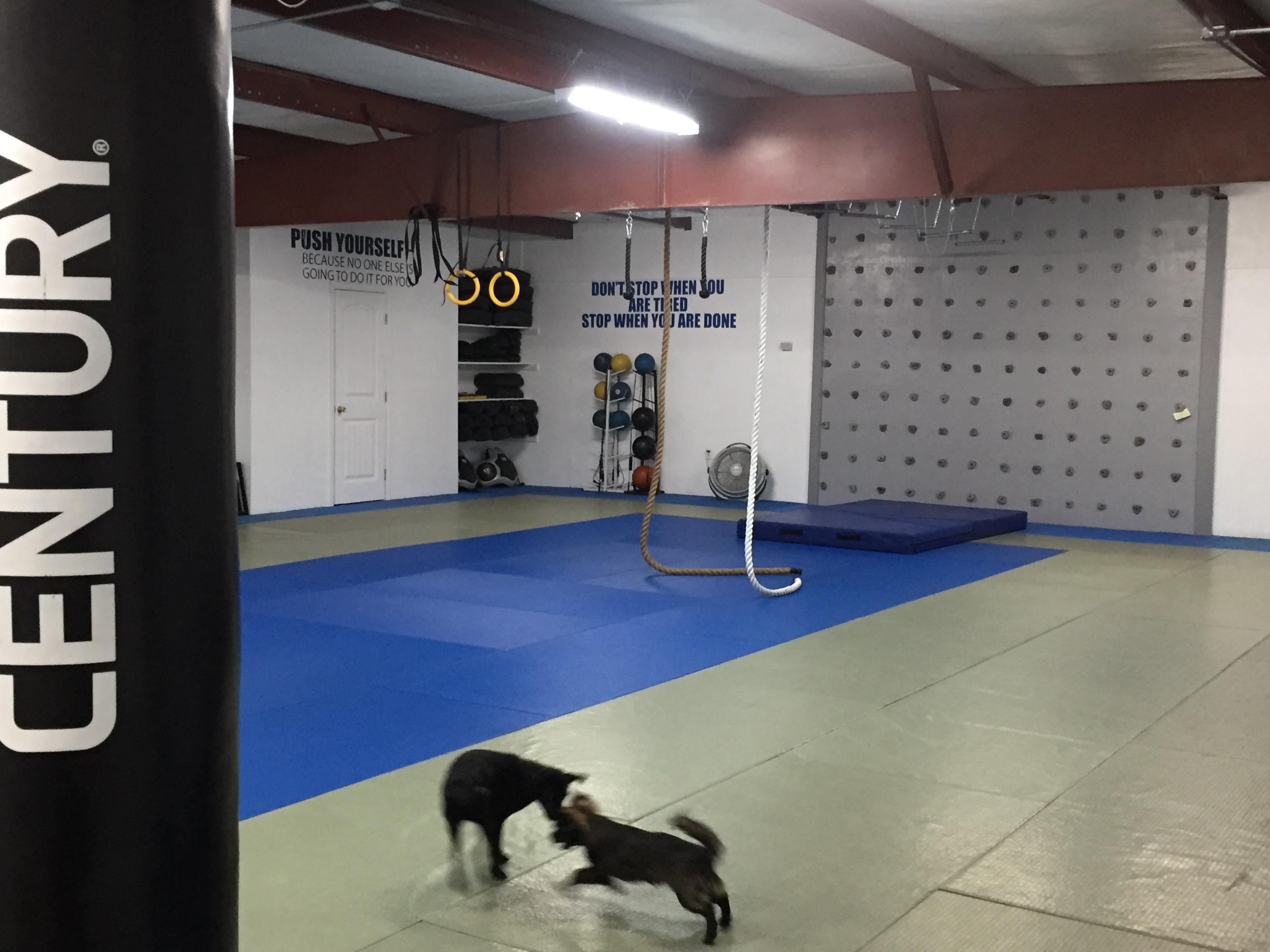 Combat Krav- Climbing wall/ropes